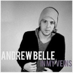 In My Veins By Andrew Belle (feat. Erin McCarley) - Single